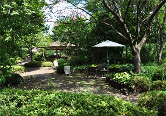 病院併設の自然豊かな遊歩公園