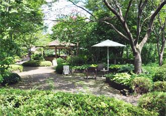 【遊歩公園】四季折々の花・植物をお楽しみ頂けます