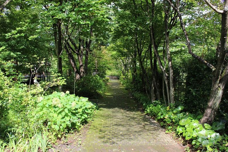 遊歩公園160907